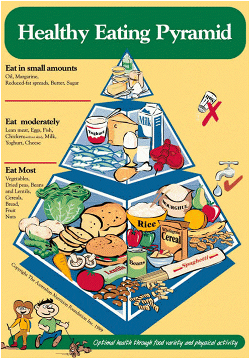 Nutrition Australia Just Released A New Food Pyramid!