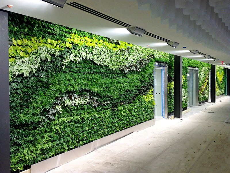 In Images The 10 Most Beautiful Green Walls 1 Million