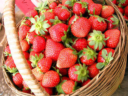 10 secrets for growing the sweetest strawberries at home | 1