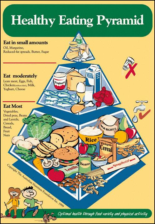 Australia New Food Pyramid