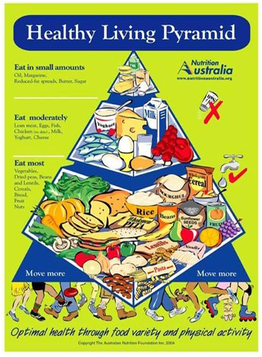 Australia New Food Pyramid
