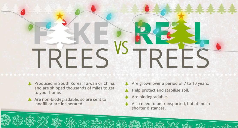 Rethinking Your Christmas Tree | 1 Million Women
