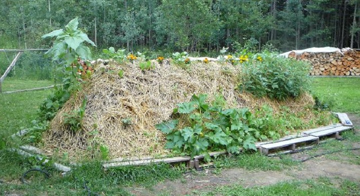 How To Make A Hugelkultur Raised Garden Bed 1 Million Women